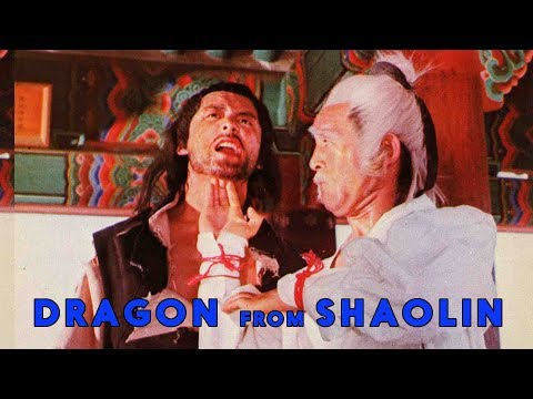 Wu Tang Collection - Dragon From Shaolin