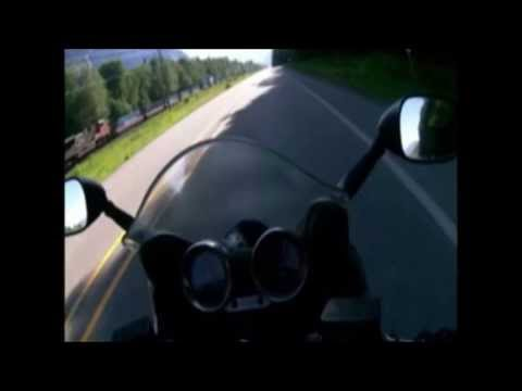 Motorcycle rider collides with bear
