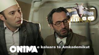 Stupcat - Seriali Amkademiku Episodi 6