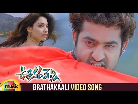 Oosaravelli Telugu Movie Video Songs | Brathakaali Telugu Video Song | Jr NTR | Tamanna | DSP