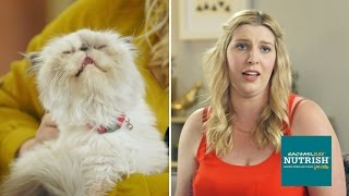 People Who Hate Cats Live With Cats For A Week // Presented By BuzzFeed & Rachael Ray Nutrish