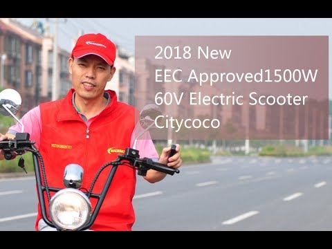 2018 New EEC & COC Approved 1500W 60V Electric Scooter Citycoco from China Facotry