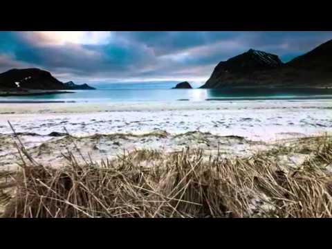 смотреть ролик любовь на природе