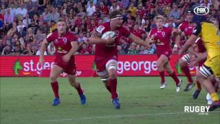 Reds flyhalf Quade Cooper was the most notable omission from Wallabies coach Michael Cheika's 38-man train-on squad for the...