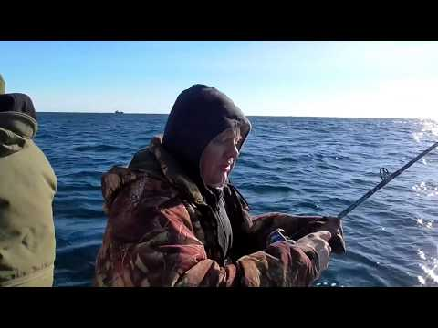 рыбалка с берега баренцево