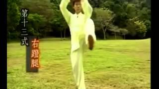 24式簡化太極拳 練習全套 - 李晖