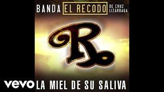 Banda El Recodo De Cruz Lizárraga  La Miel De Su Saliva Audio