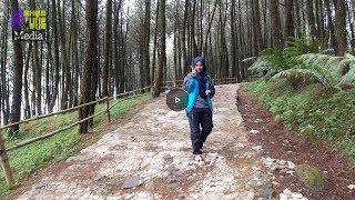 Download Video Wisata Taman Nasional Gn. Halimun Salak (edisi Curug  Batu Ampar) MP3 3GP MP4