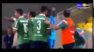 Gols e Melhores Momentos de Fluminense 2 x 0 Coritiba - Brasileirão 04/06/2015
