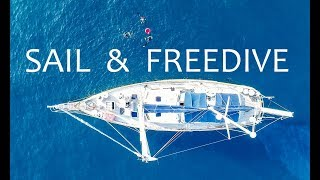 Sail and freedive in Croatia