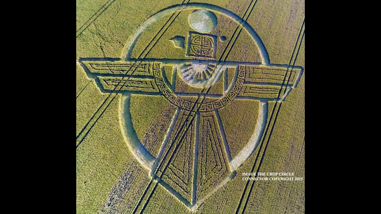 Смотреть онлайн: Рисунки на полях, Уилтшир, Англия, 25 июля 2015г