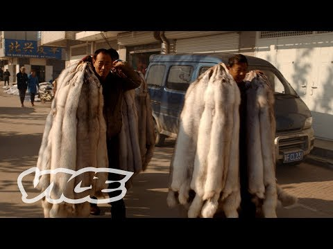 China's Obsession with Mink Coats