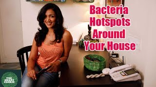 Hygiene for Bacteria in Your House- TAMIL