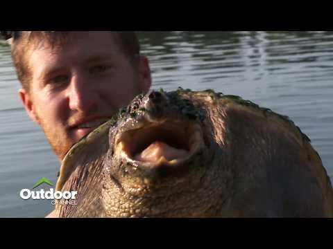 Largemouths and Lake Dragons - Hook N' Look Episode 4 Season 13 Preview