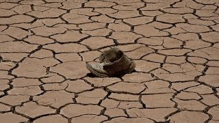 Does Climate Change Increase Conflict?