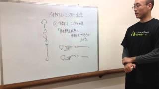 体幹トレーニングのお話②~体幹トレーニングの効果って?~