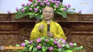 Vấn đáp: Cảm xúc khi niệm Phật - TT. Thích Nhật Từ