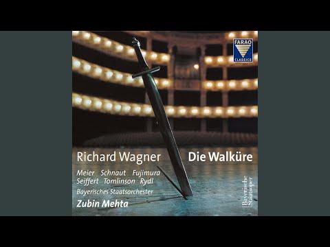 Die Walküre, WWV 86B, Act I Scene 3: Schläf'st du, Gast? (Sieglinde, Siegmund)