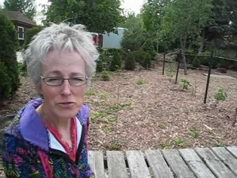 Mulch Bed Gardening – Wisconsin Garden 10.wmv