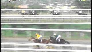 RACE 2 SHOUT FOR JOY 08/21/2014