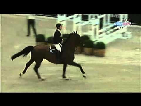Grand Palais Paris CSI 5* 17/04/2011 Grand Prix Hermes Jumping