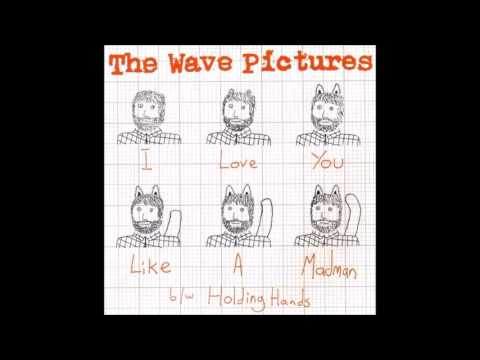 The Wave Pictures - I Love You Like A Madman