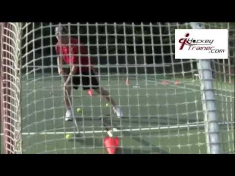 Best Online Hockey Training for Skills – Skating, Shooting, Passing, Stick Handling, NHL Pro