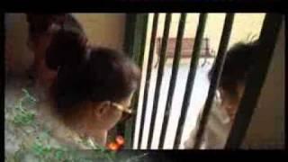 Video Gara gara Kasih Roti Ke Ariel,Luna Maya Kena Semprot Petugas - CumiCumi.com MP3, 3GP, MP4, WEBM, AVI, FLV Mei 2019