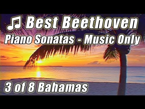 Classical Music for Studying Concentration Focus BEETHOVEN 3. Piano Sonatas Instrumental video study