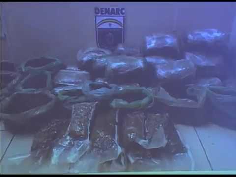 Polícia apreende 40 quilos de maconha em Ouro Preto, Olinda
