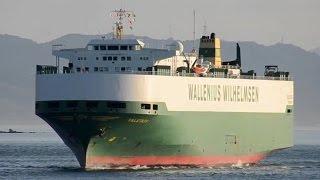 Falstaff   Wallenius Wilhelmsen Logistics Vehicles Carrier   2015