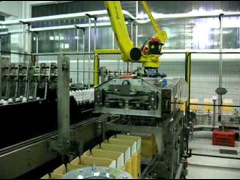 Self adjustable robotic case packer mpg