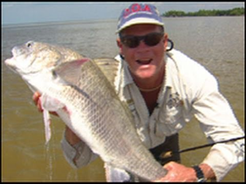 A Glades Odyssey – Wading for Snook, Black Drum and Specks
