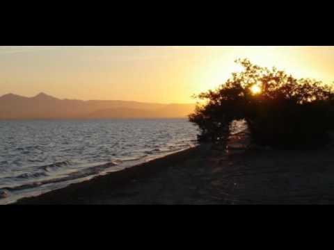 0  VIDEOS: La Paz Beach Houses for Sale