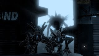 Video Aliens vs. Predator - Alien - Research Lab MP3, 3GP, MP4, WEBM, AVI, FLV Maret 2019