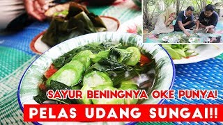 Video Sedapnya Pelas Udang Sungai + Sayur Bening + Sambel Goang !! MP3, 3GP, MP4, WEBM, AVI, FLV April 2019