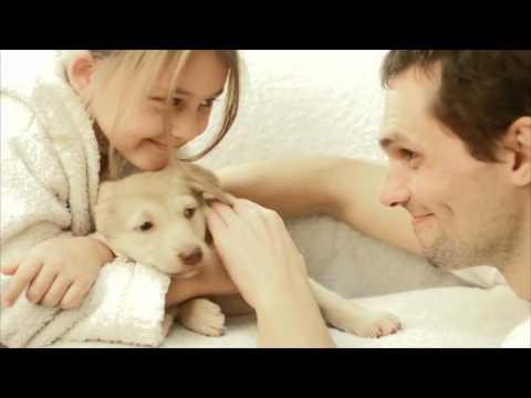 Prodotti per la cura, igiene e pulizia degli animali domestici - Mafra Pet Line