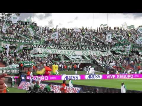 Los del sur Sábado 16 de Mayo. Atlético Nacional Vs Deportivo Cúcuta - Los del Sur - Atlético Nacional