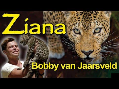 Ziana song preview – Bobby van Jaarsveld