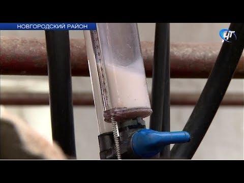 В деревне Савино прошел областной конкурс среди мастеров машинного доения