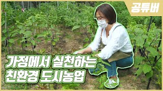 (종로구)가정에서 실천하는 친환경 도시농업 '친환경 방제제'_종로tv 썸네일