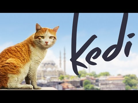 Kedi - Full Length Documentary (видео)