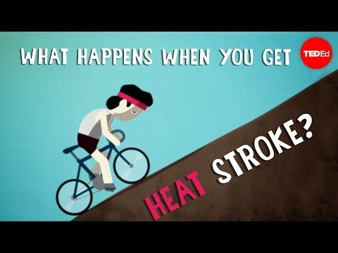 What happens when someone gets heat stroke? TED-Ed video