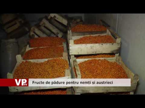 Fructe de pădure pentru nemți și austrieci