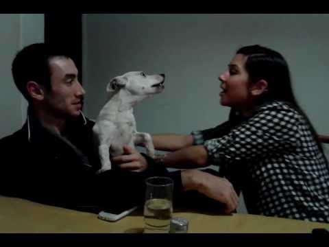 Video perra guardiana y celosa download in MP3, 3GP, MP4, WEBM, AVI, FLV January 2017