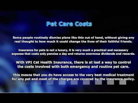 VPI Cat Health Insurance – Balancing Care and Costs