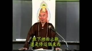 Trích Kinh Vô Lượng Thọ Tập 30 (1992) - Pháp Sư Tịnh Không