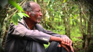 Didamo Chala, Part Of The AAA Sustainability Program In Ethiopia