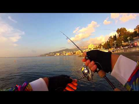 рыбалка в мае в ялте с берега