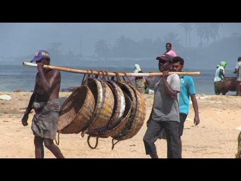 рыбалка в коломбо